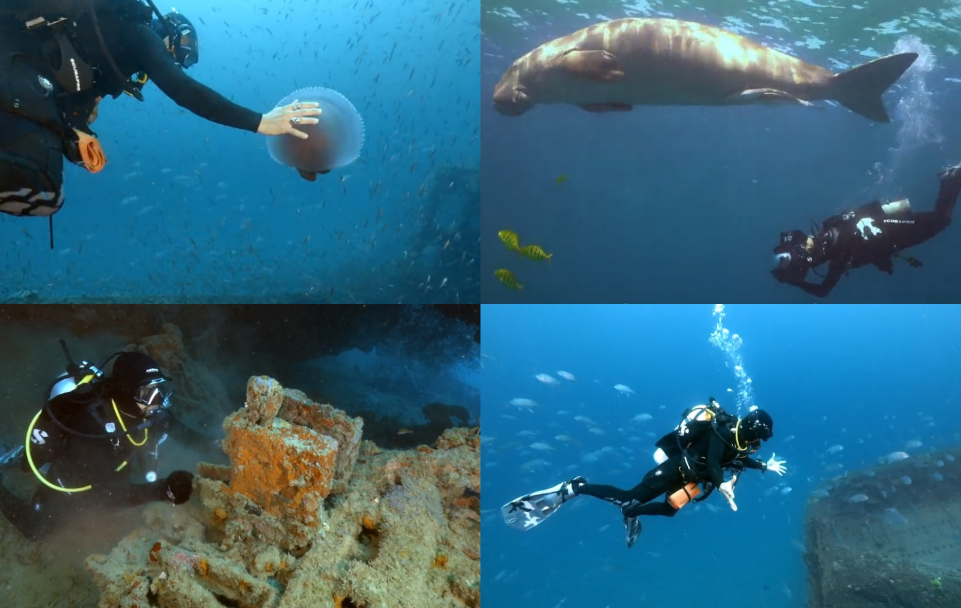 """iWant's """"Wreck Hunters"""" gives you 5 reasons to try wreck diving after quarantine"""