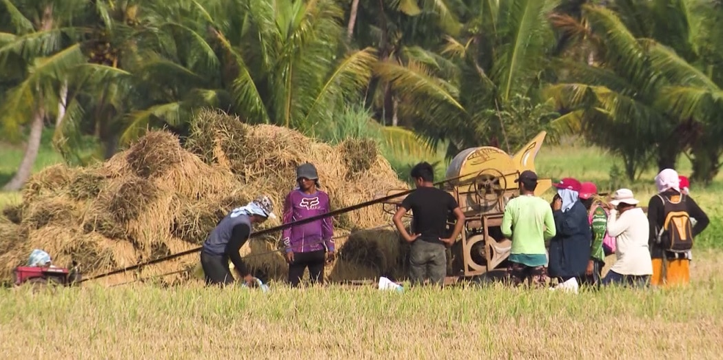Due to lack of access to government support, many of our farmers are forced to find other work and livelihood
