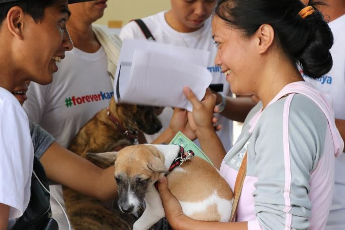 Pet check ups were also available in the Kapamilya Love Weekend in Cebu
