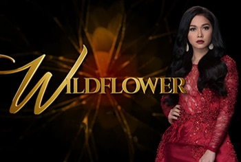 "Get Ready For The Wildest Finale Week From ABS-CBN's ""Wildflower"""